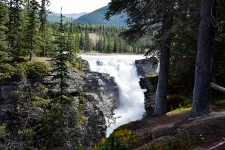 Sunwapta Falls, Jasper National Park, Alberta.