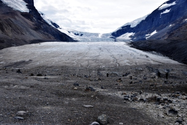 Athabasca Glacier, Columbia Icefield, B.C.